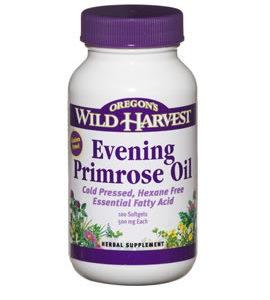 Oregon Wild Harvest Evening Primrose