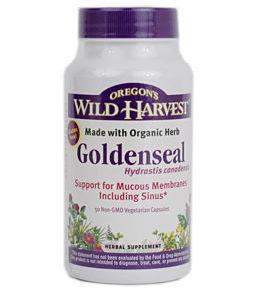 Oregon Wild Harvest Goldenseal